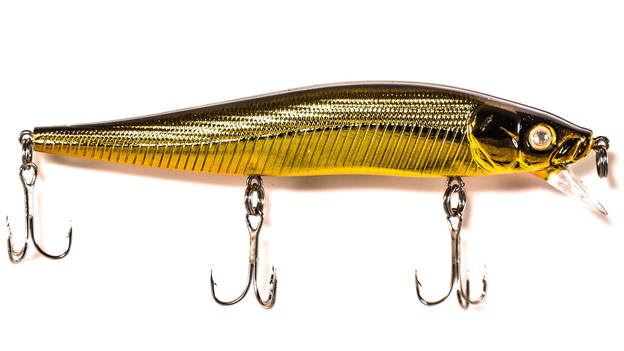 Back Bay Minnow