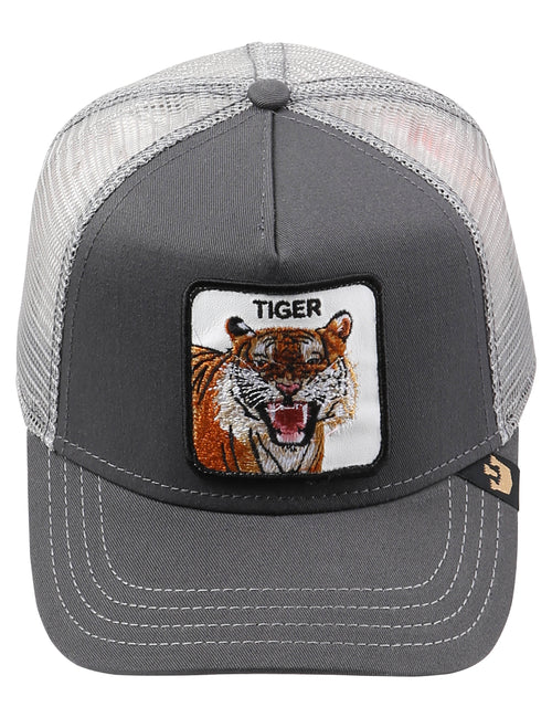 Eye Of Tiger_Gray