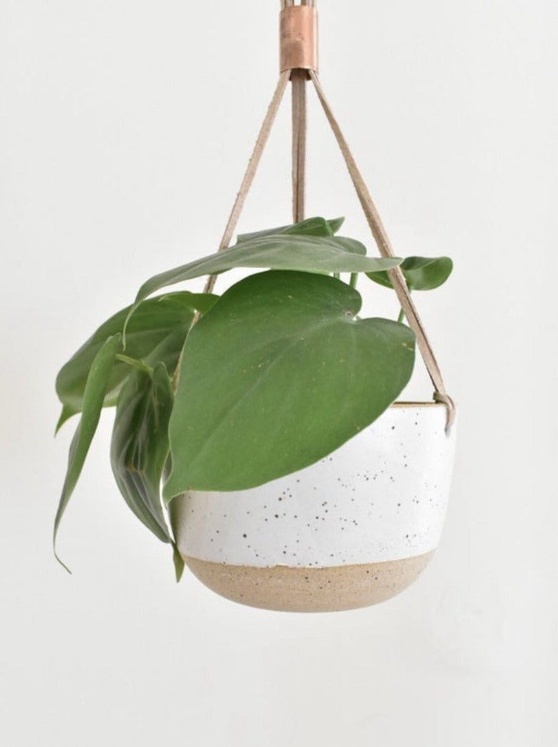 Small Simple Hanging Planter