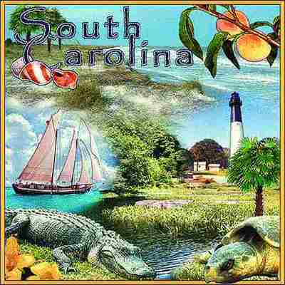 South Carolina Pillow