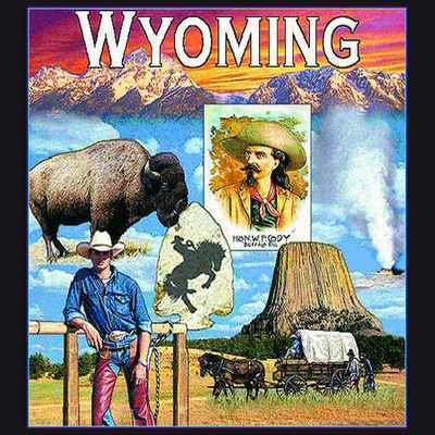 Wyoming Pillow