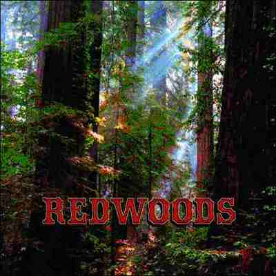 Redwoods Pillow