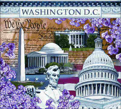 Washington DC Coverlet