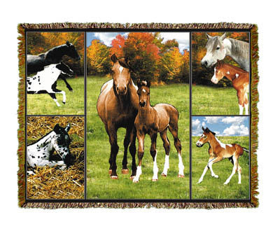 Horse Mares & Colts Coverlet