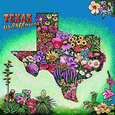 Texas Wildflowers Pillow