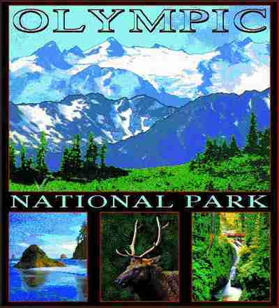 Olympic National Park Coverlet