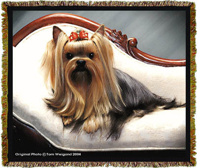 Yorkie Coverlet -Tom Weigand ©