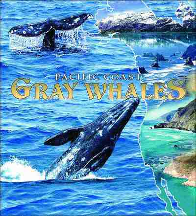 Gray Whales Coverlet