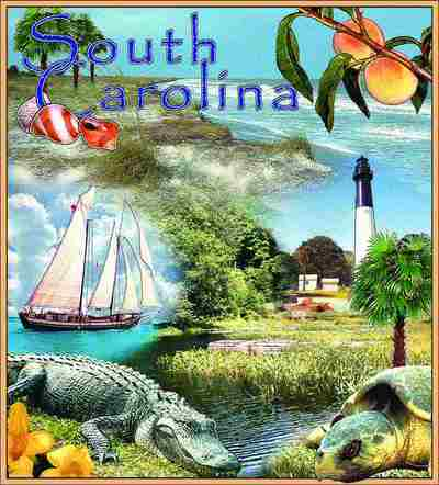 South Carolina Coverlet