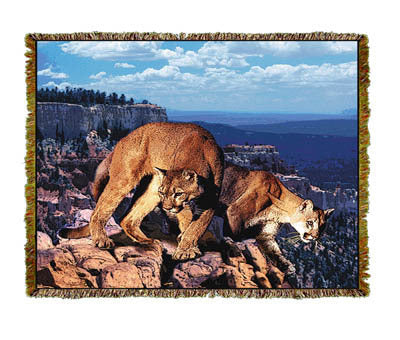 Mountain Lions Coverlet