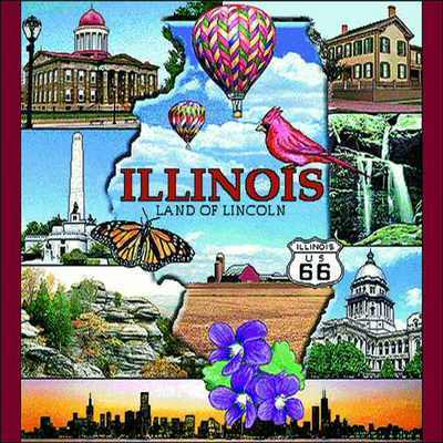 Illinois Pillow