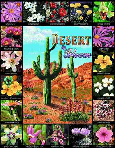 Desert In Bloom Wallhanging