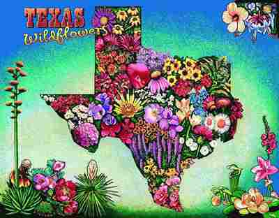 Texas Wildflowers Wall Hanging