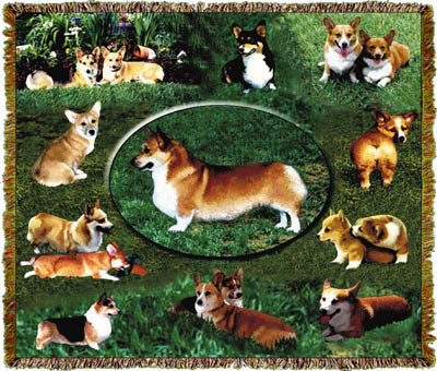 Corgi Dog Throw Blanket