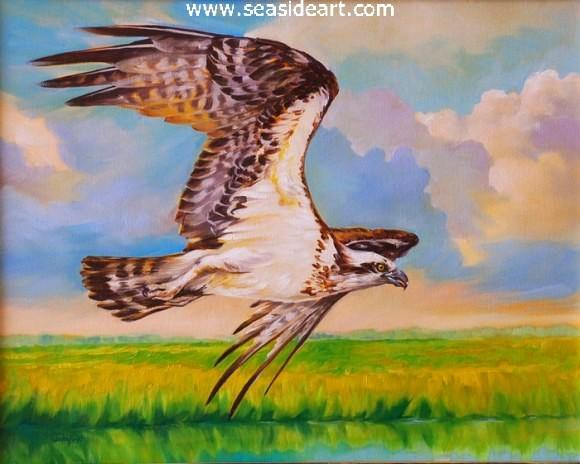 Osprey is an original oil painting by Laurie Waterfield