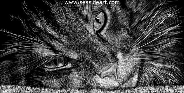 Sebastian is a miniature work of art created by scratchboard by Michelle Pattee