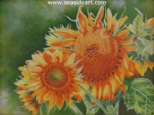 Sunflower's Golden Glory   is an  original  oil painting on ivorine by Beverly Abbott