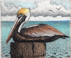 Resting Post is a water colored etching of a pelican by David Hunter