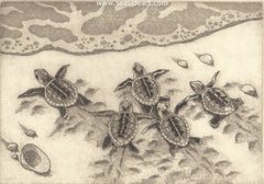 Ready, Set, Go! is an original etching of baby sea turtles by artist David Hunter