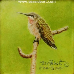 Young Male Hummingbird, miniature oil painting by Beverly Abbott