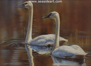 Together - Trumpeter Swans by Rebecca Latham - Seaside Art Gallery