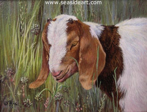 Buttons (Boer Goat) by Catherine Girard - Seaside Art Gallery