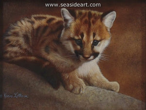 Blue Eyes-Cougar Kitten by Karen Latham - Seaside Art Gallery