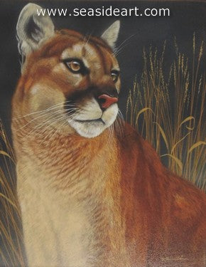 Strength of Presence-Mountain Lion I by Rebecca Latham - Seaside Art Gallery