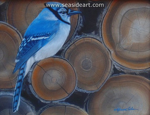 Wood Pile-Blue Jay by Rebecca Latham - Seaside Art Gallery