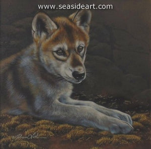 Peaceful Spot-Wolf Pup by Rebecca Latham - Seaside Art Gallery