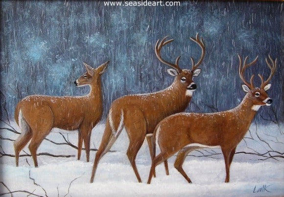 Whitetails in Winter