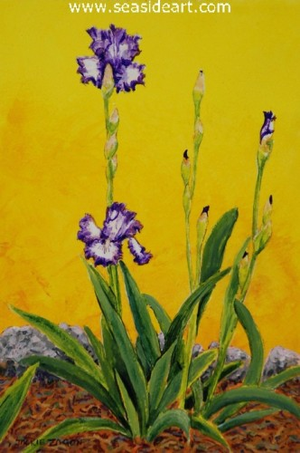 Iris, Stepping Out by Jackie Zagon - Seaside Art Gallery