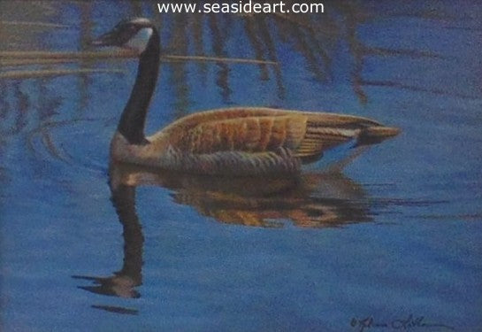 Afternoon Shimmer – Canada Goose by Rebecca Latham - Seaside Art Gallery