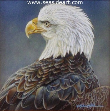 Focus (American Bald Eagle) by Rebecca Latham - Seaside Art Gallery