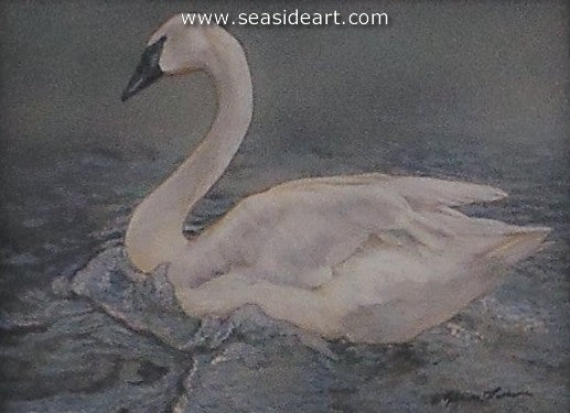 Bathing-Trumpeter Swan by Rebecca Latham - Seaside Art Gallery
