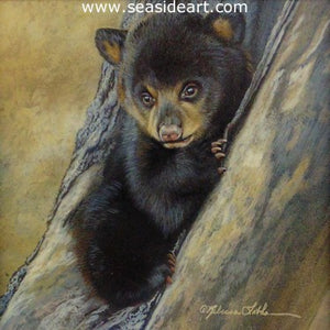 Black Bear Cub by Rebecca Latham - Seaside Art Gallery
