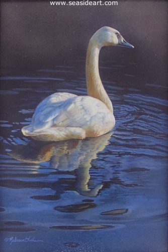 Calm Waters (Trumpeter Swan) by Rebecca Latham - Seaside Art Gallery