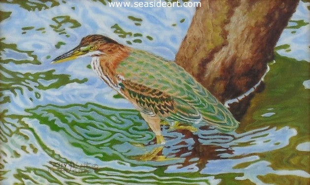 Abbott-Camouflaged by the Water (Green Heron)