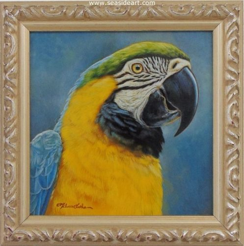Colorful Personality (Macaw) by Rebecca Latham - Seaside Art Gallery