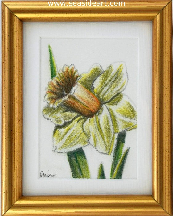 Spring II - Daffodil by Connie Cruise - Seaside Art Gallery