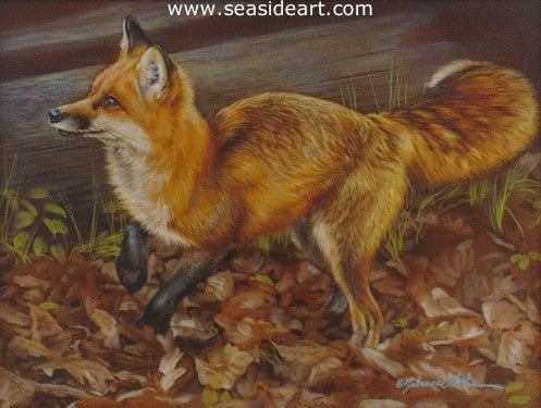 Dashing (Red Fox) by Rebecca Latham - Seaside Art Gallery