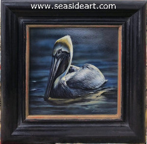 Latham B-Drifting (Brown Pelican)