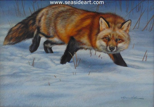 Winter Walk (Red Fox)