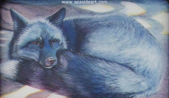 Foxy Shades of Gray by Pamela Brown Broockman - Seaside Art Gallery