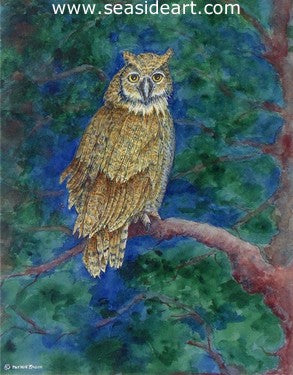 Zagon-Howland (Great Horned Owl)
