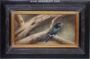 Out On A Limb-Hornbill by Rebecca Latham - Seaside Art Gallery