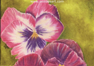 Pansies by Connie Cruise - Seaside Art Gallery