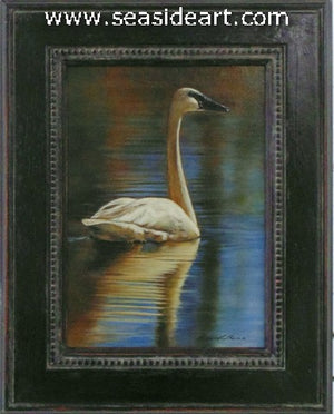 Peaceful Colors (Trumpeter Swan)