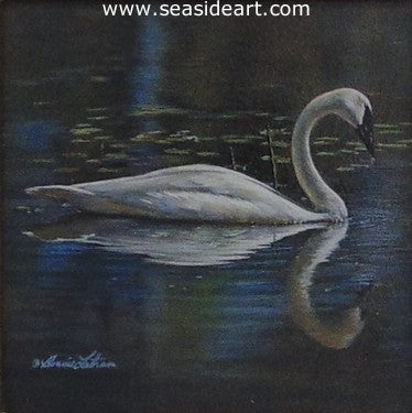 Peaceful Reflection (Trumpeter Swan)