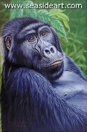 Abbott-Pensive (Mountain Gorilla of Uganda)
